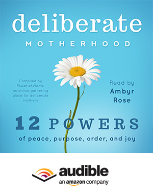 Deliberate Motherhood (Audiobook)