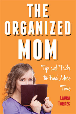 The Organized Mom